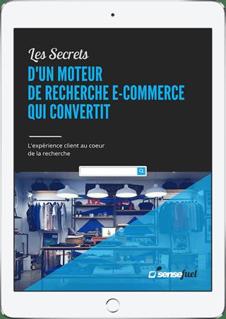 moteur de recherche interne pour site e-commerce